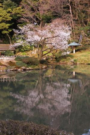 Kanazawa004