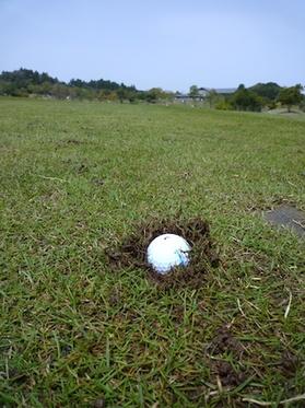 Golf201005