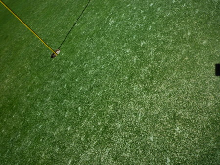 Golf045