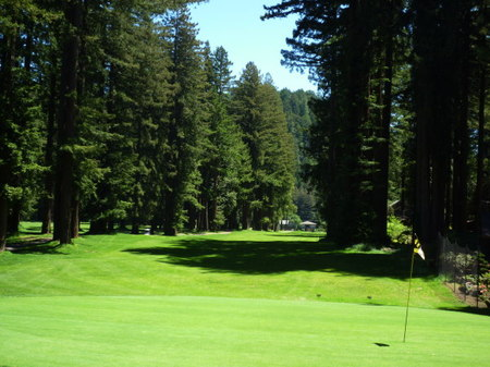 Golf049