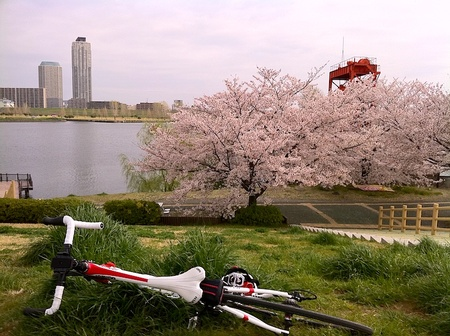 Cycle002
