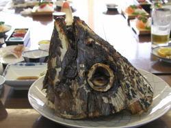 Jogashima3