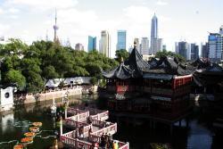 Shanghai16