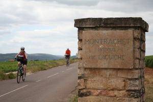 montrachet4